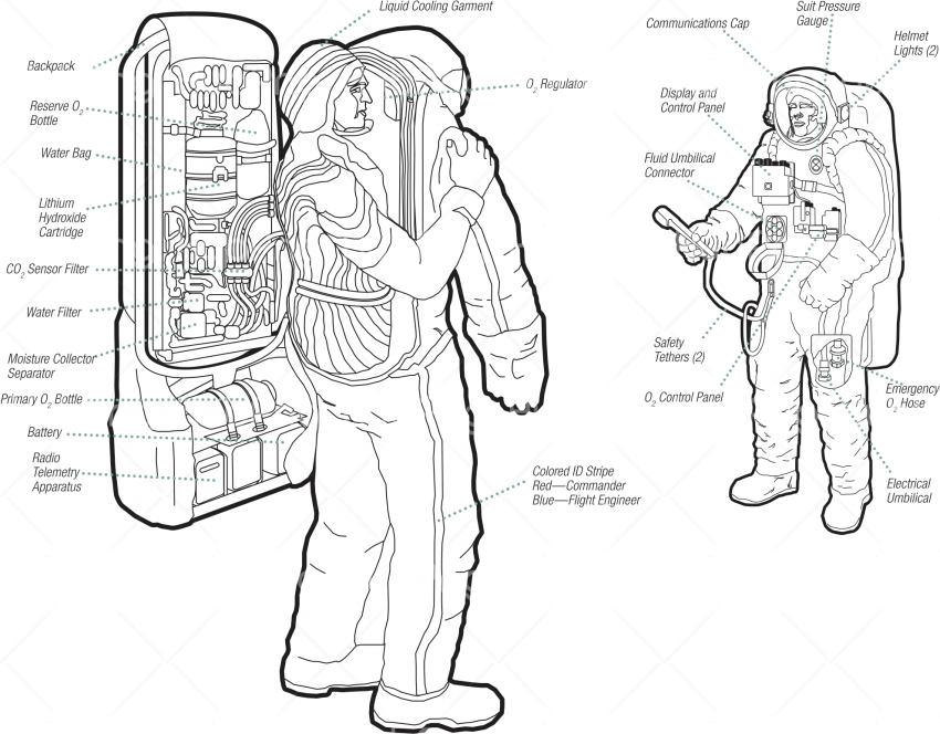 astronauta infographic astronauta png Transparent Background Image for Free