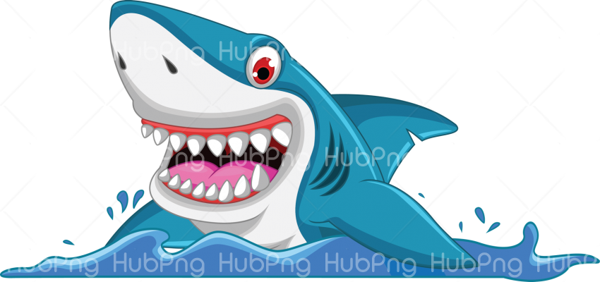 baby shark fish png Transparent Background Image for Free