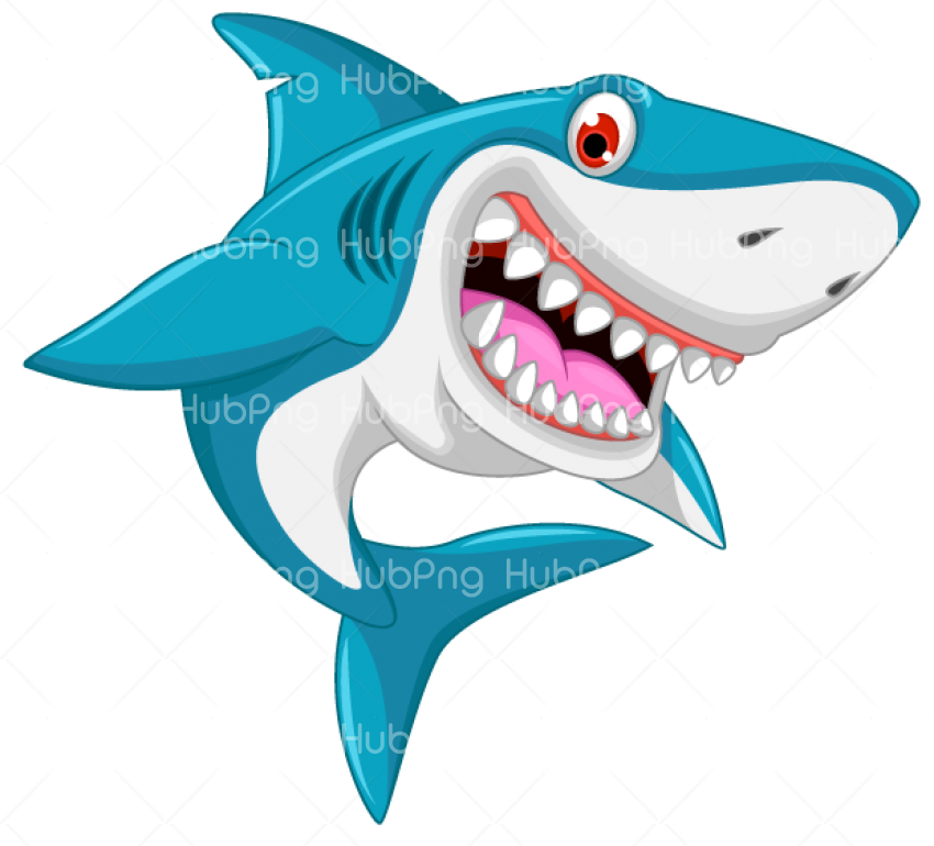 baby shark png Transparent Background Image for Free