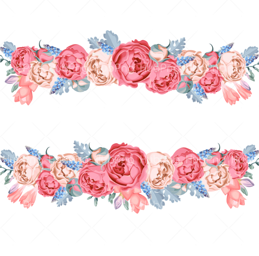 background designs flowers png Transparent Background Image for Free