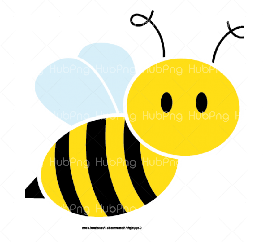 bee png clipart Transparent Background Image for Free