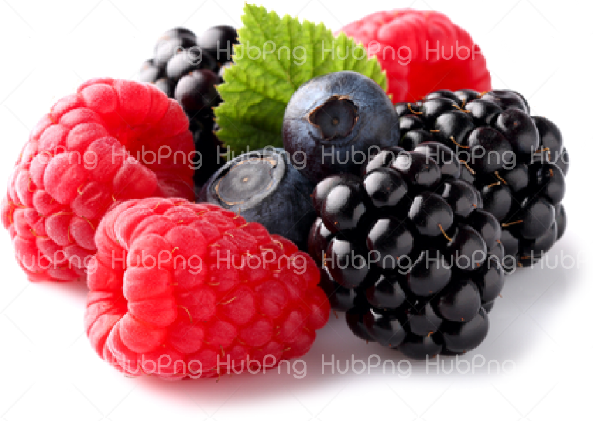 berries png hd Transparent Background Image for Free