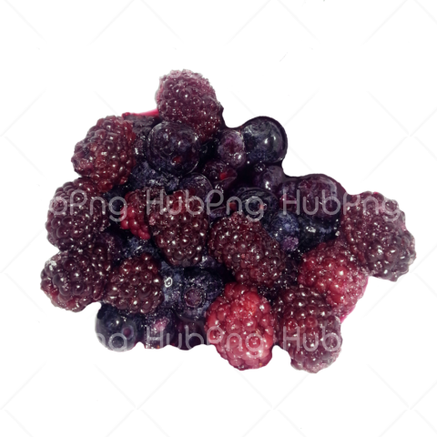Berries png hd red Transparent Background Image for Free
