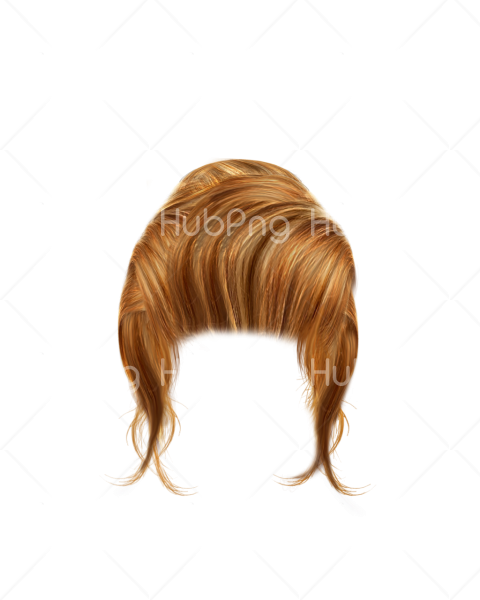 blonde hair png hd Transparent Background Image for Free