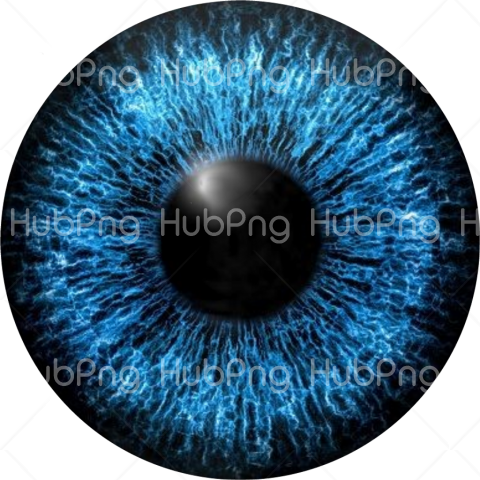 blue eye png Transparent Background Image for Free