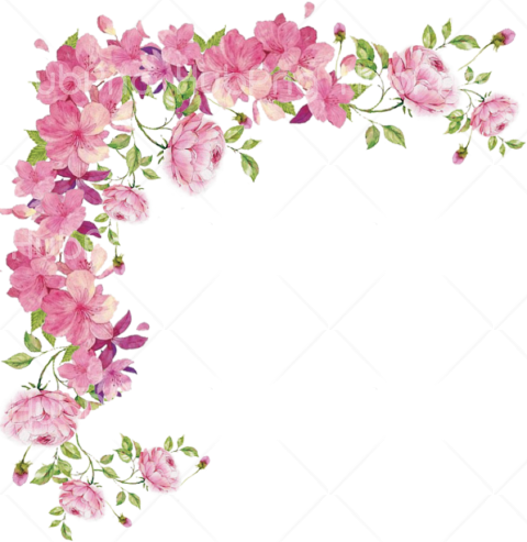 borders png flower pink hd Transparent Background Image for Free