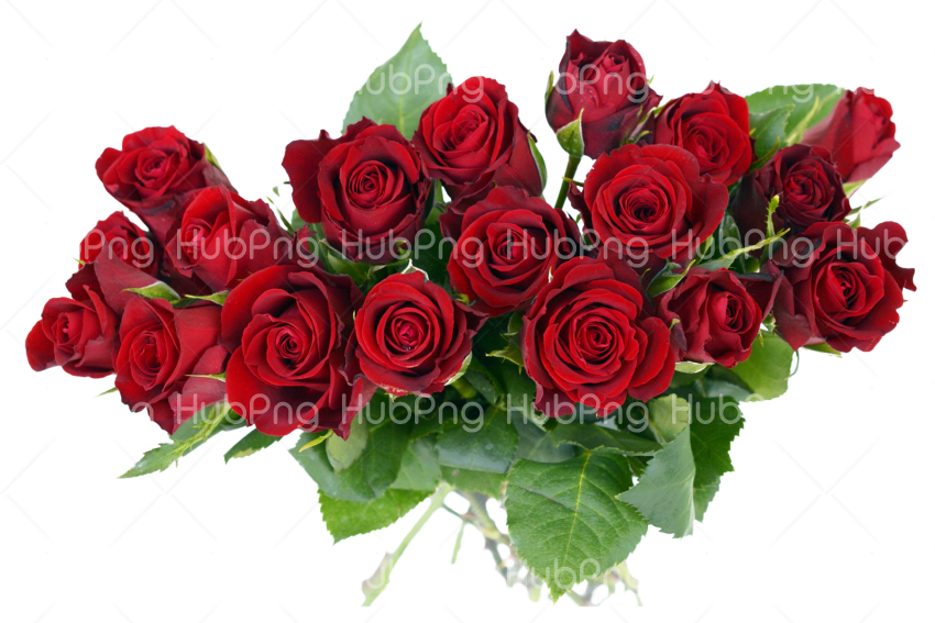 Bouquet flowers PNG clipart  transparent images Transparent Background Image for Free