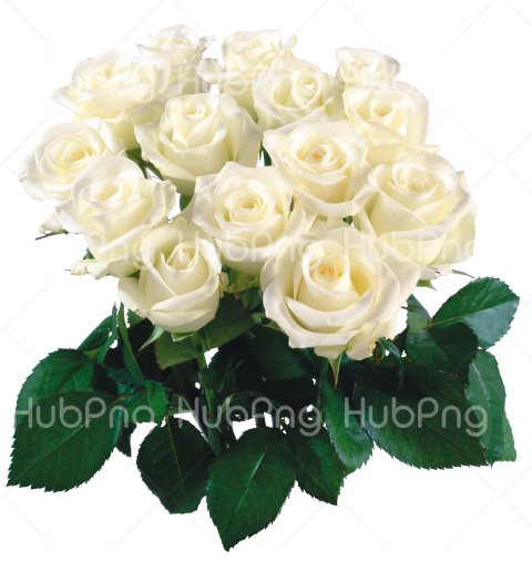 Bouquet flowers PNG image with transparent background Transparent Background Image for Free