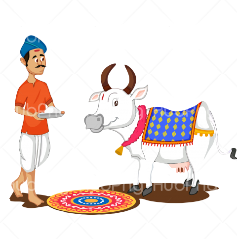 bovine cartoon pongal png clipart cartoon Transparent Background Image for Free
