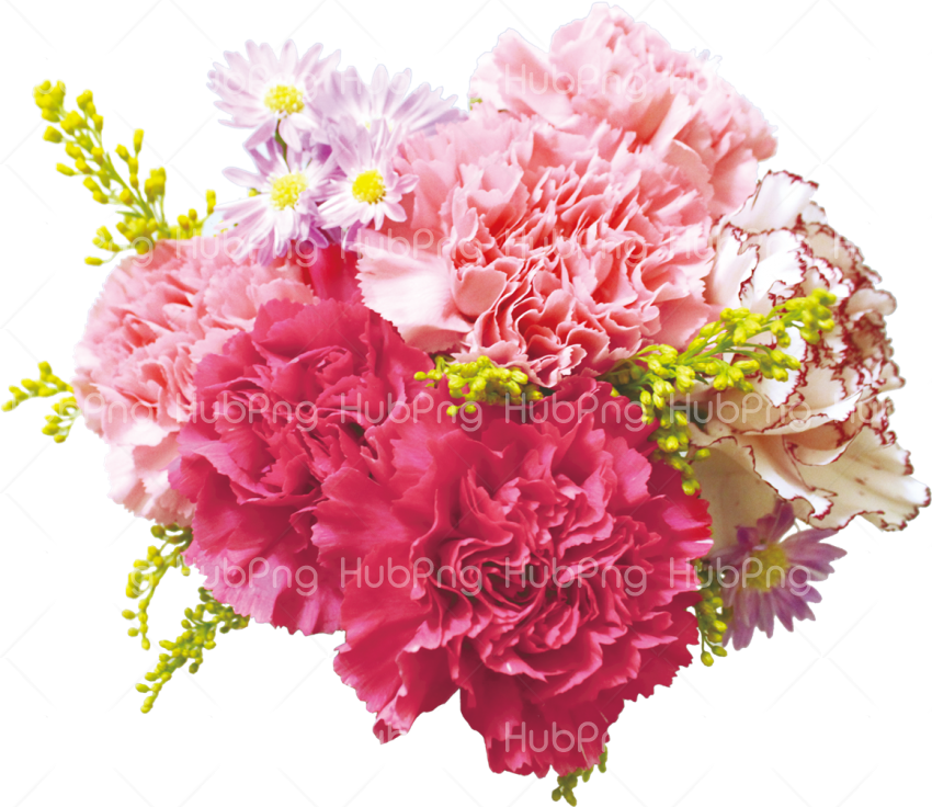 bunch of flowers png Transparent Background Image for Free