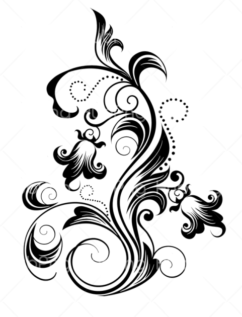 bunga png vector Transparent Background Image for Free