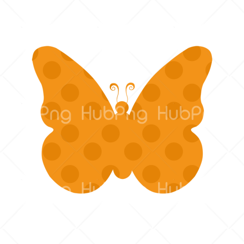 butterfly borboletas png clipart Transparent Background Image for Free