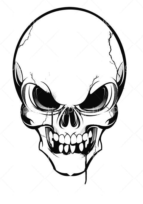 calavera png clipart Transparent Background Image for Free
