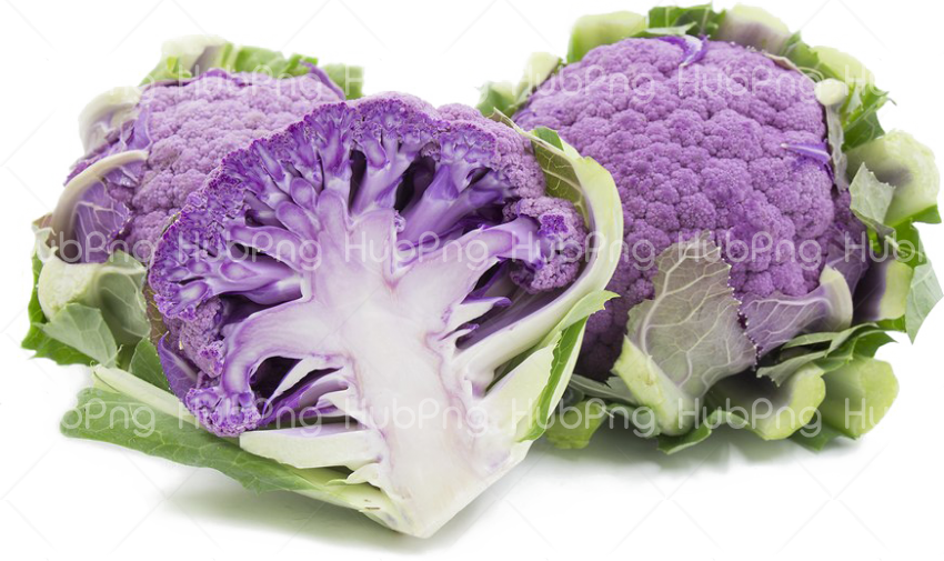 Cauliflower PNG HD Quality Transparent Background Image for Free