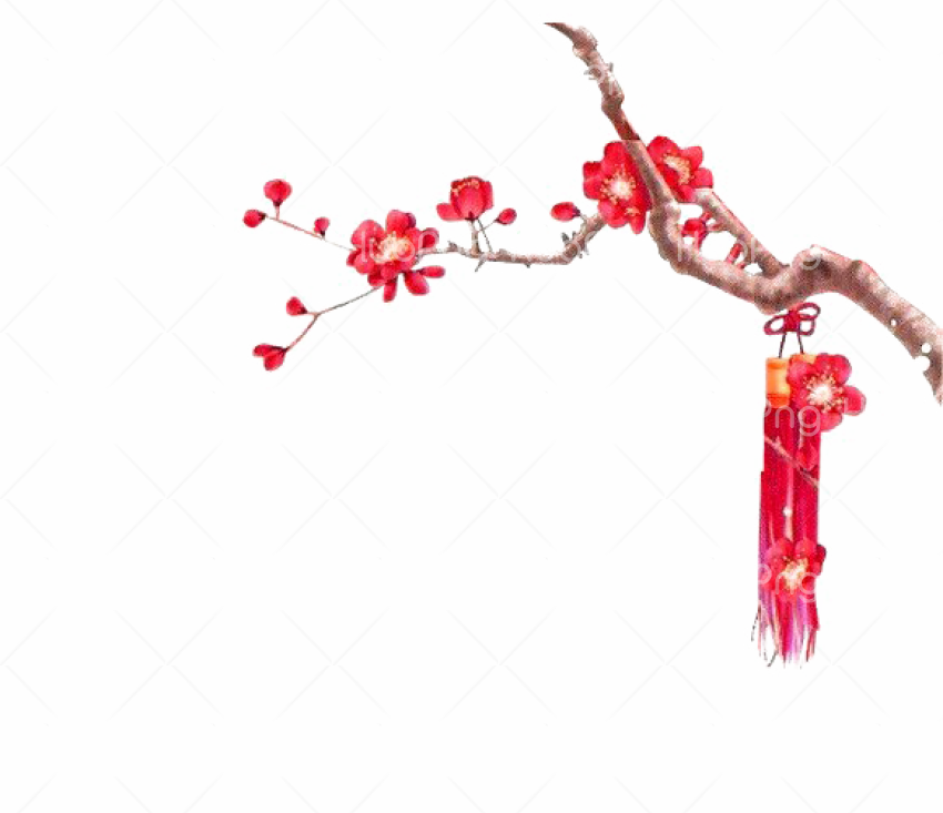 Chinese Flower PNG Transparent image Transparent Background Image for Free