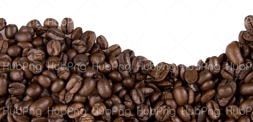 coffee beans png hd Transparent Background Image for Free