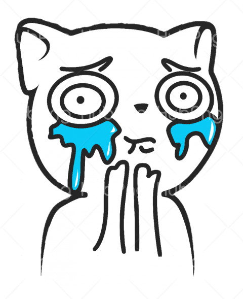 cry cat rage comic memes png Transparent Background Image ...