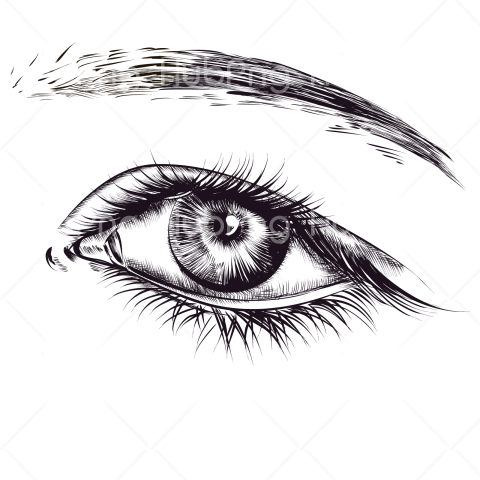 drawn eye png hd real Transparent Background Image for Free
