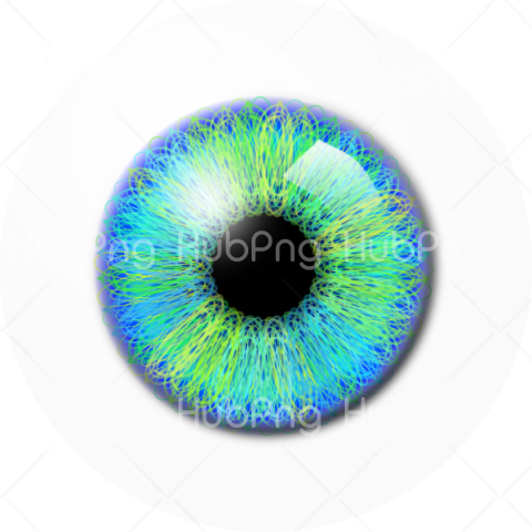 eyeball png clipart hd Transparent Background Image for Free