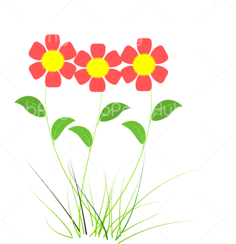 flor png Transparent Background Image for Free