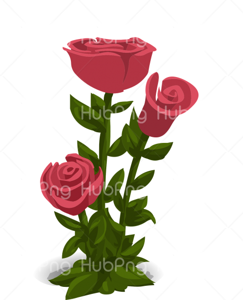 flor png hd rose Transparent Background Image for Free