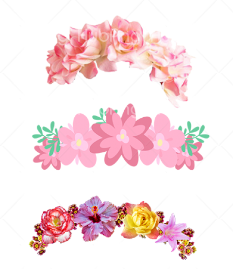 flores png Transparent Background Image for Free