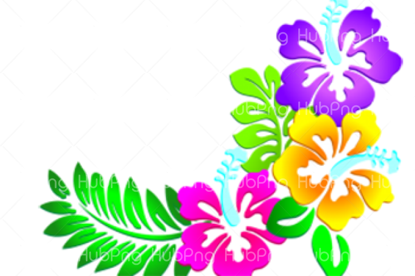 flores png hd clipart Transparent Background Image for Free