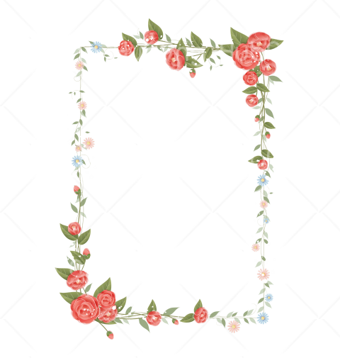 flower border png  clipart Transparent Background Image for Free