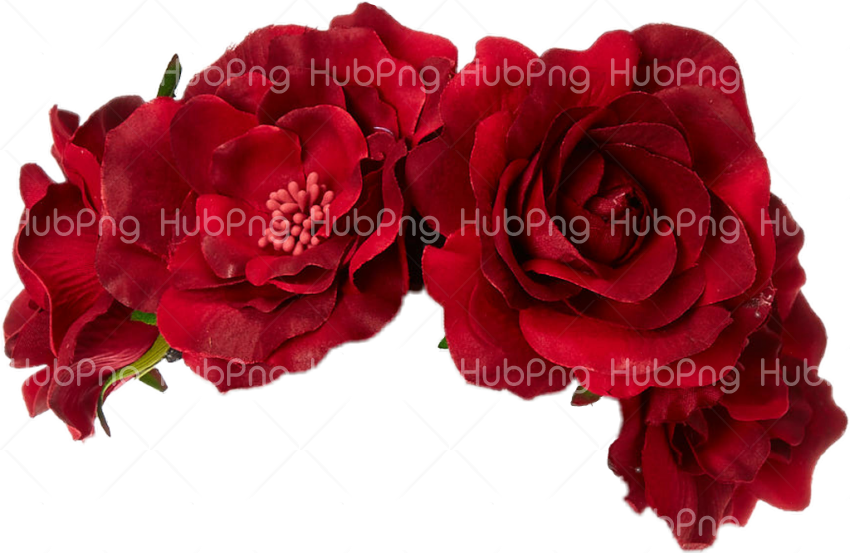 flower crown png Transparent Background Image for Free