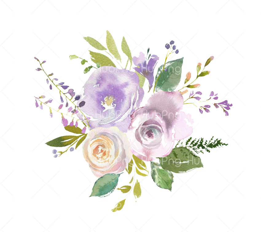 Flowers Png Watercolor paint Png Transparent Background Image for Free