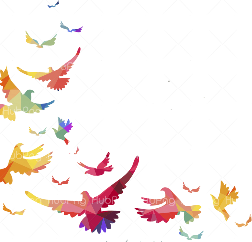 frame border png birds Transparent Background Image for Free