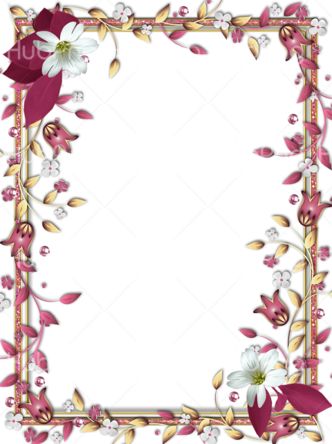 frame png hd flowers Transparent Background Image for Free
