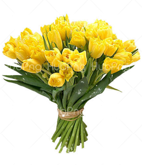 free Bouquet flowers PNG image transparent Transparent Background Image for Free