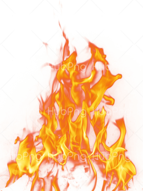 fuego png vector Transparent Background Image for Free