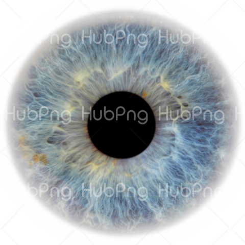 grey eye png Transparent Background Image for Free
