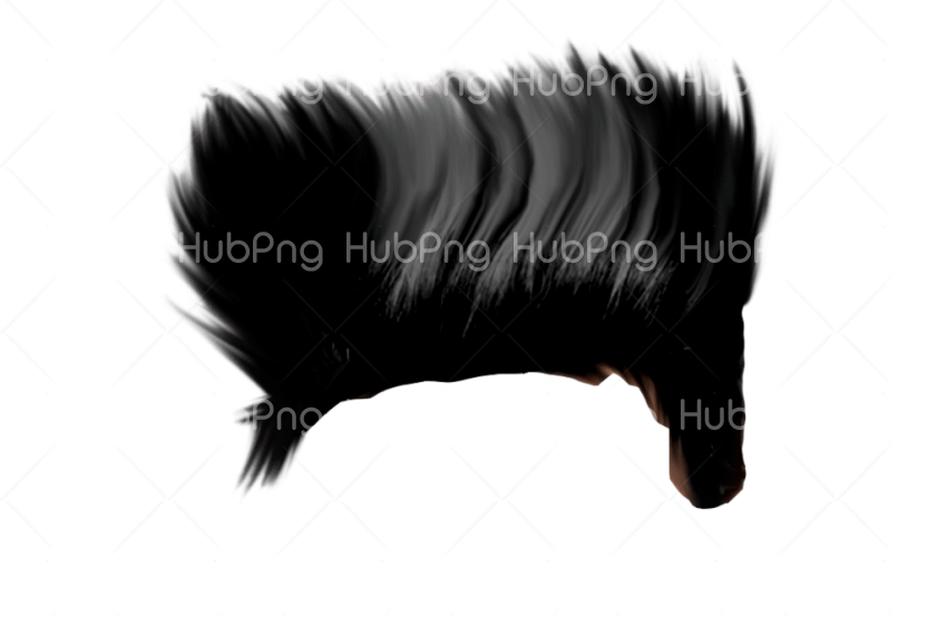 hair boy hear png Transparent Background Image for Free