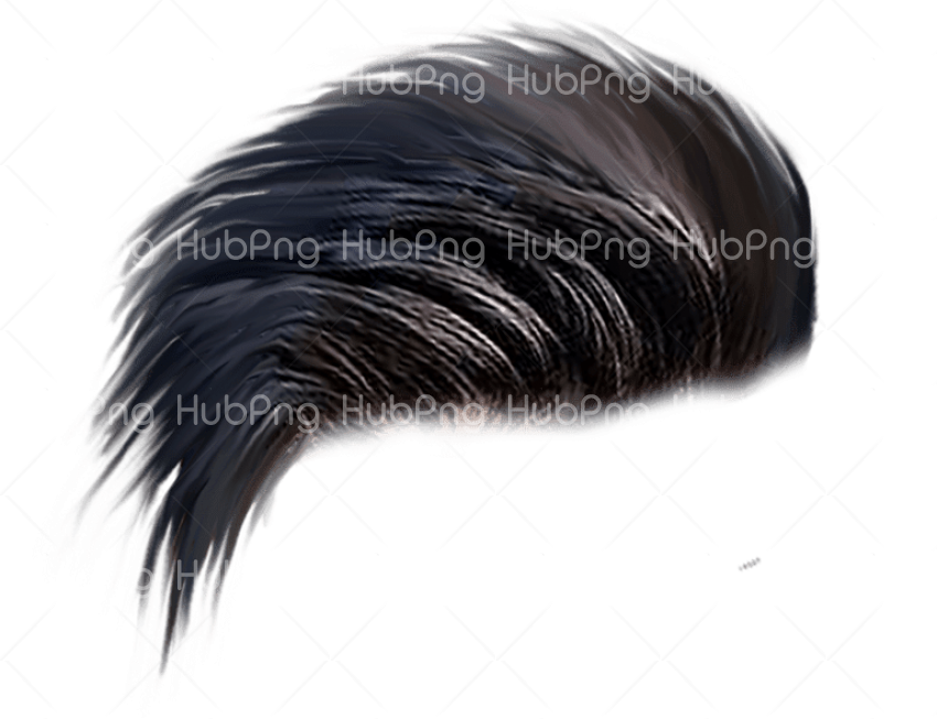 hair png hd download Transparent Background Image for Free