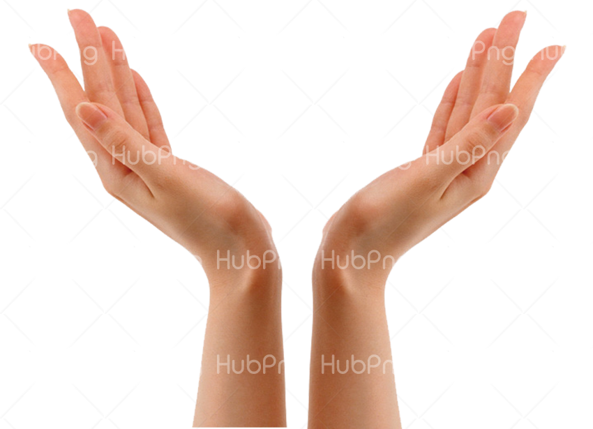 hand png hd between Transparent Background Image for Free
