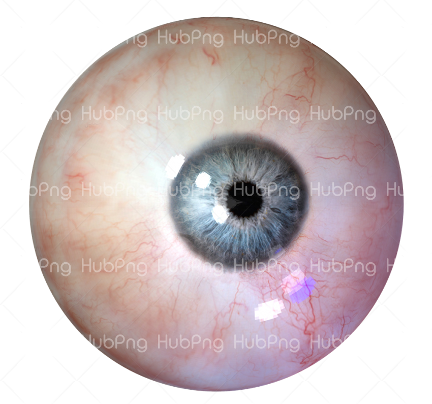 human eyes png Transparent Background Image for Free