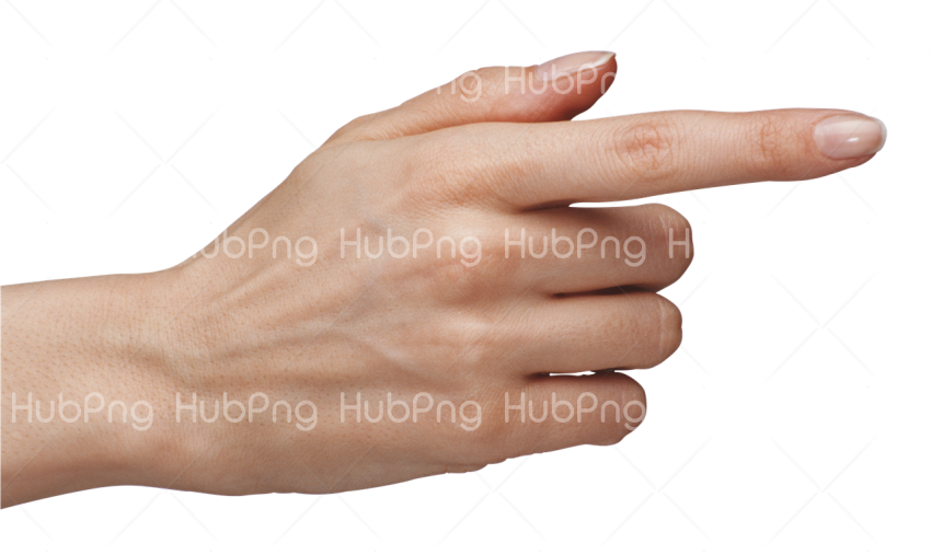 mano png hand clipart Transparent Background Image for Free