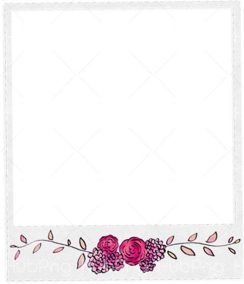 marco polaroid png flower Transparent Background Image for Free