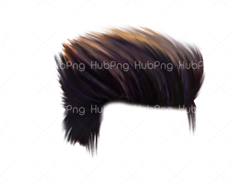 picsart hair png Transparent Background Image for Free