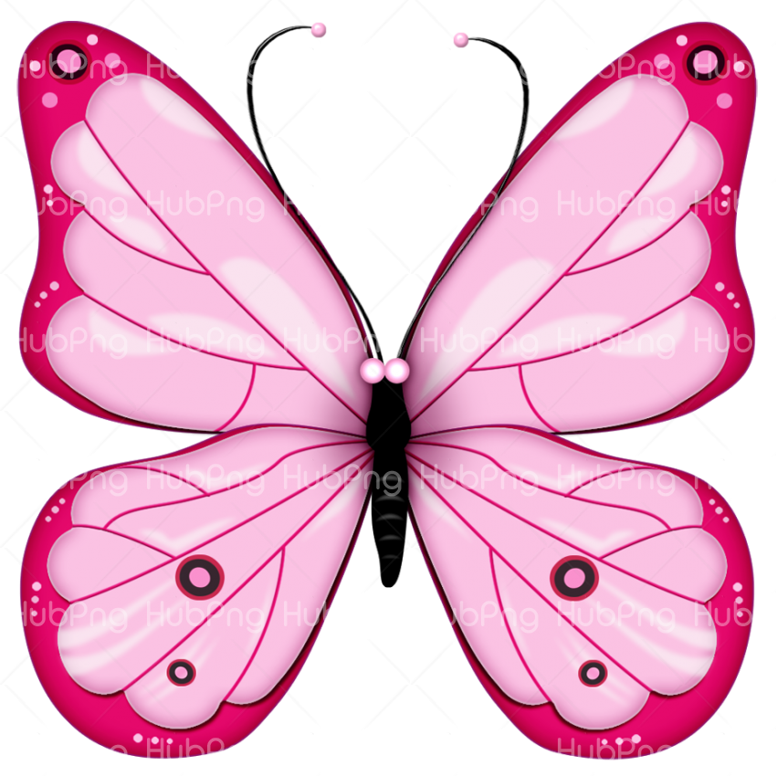 pink butterfly png Transparent Background Image for Free