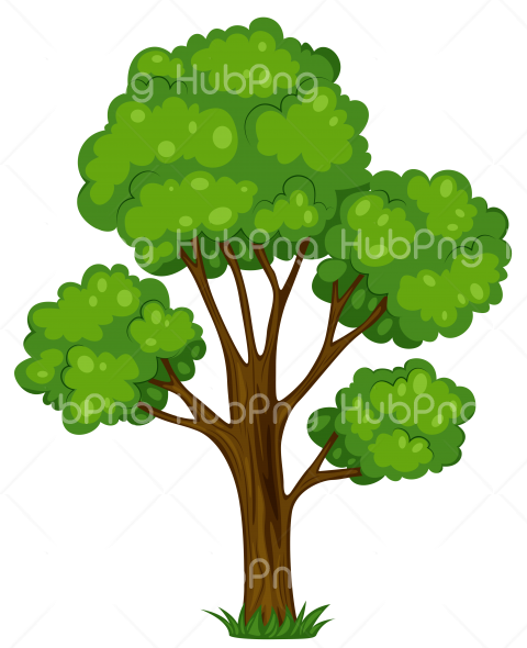 plants png clipart cartoon Transparent Background Image for Free