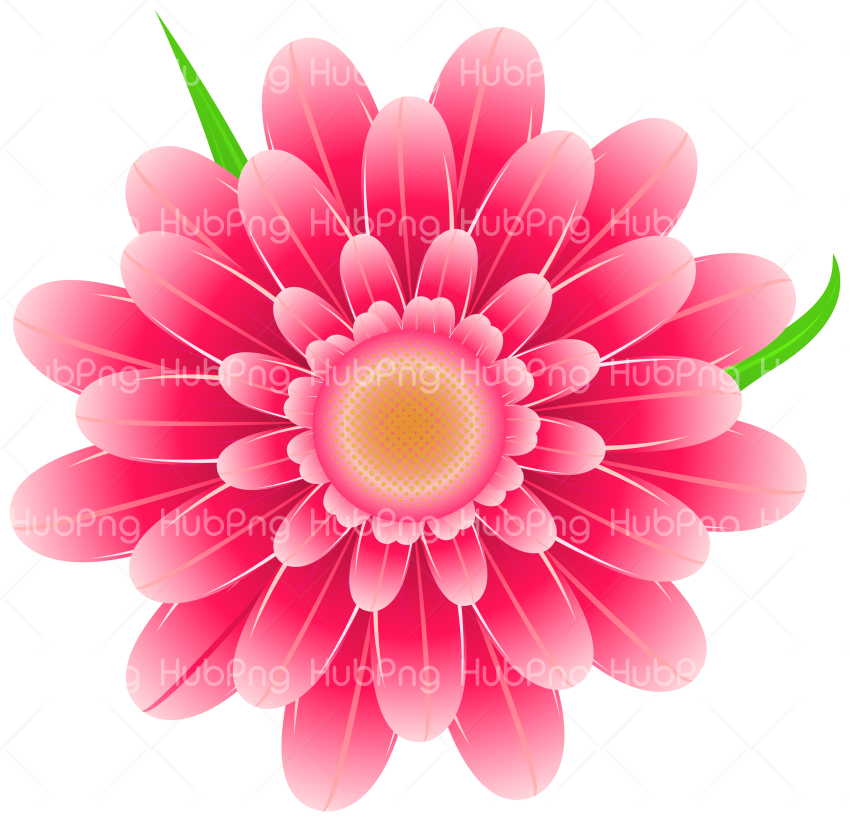 png flower vector Transparent Background Image for Free