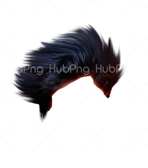 png hair boy hd Transparent Background Image for Free