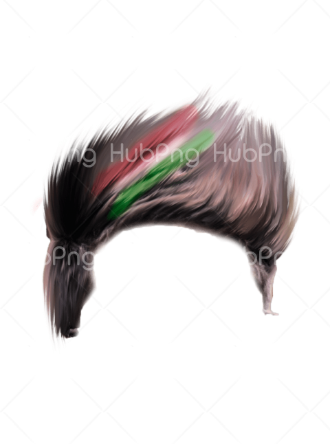 png hair color Transparent Background Image for Free