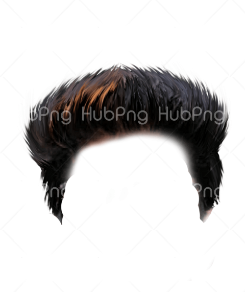png hair hd image Transparent Background Image for Free