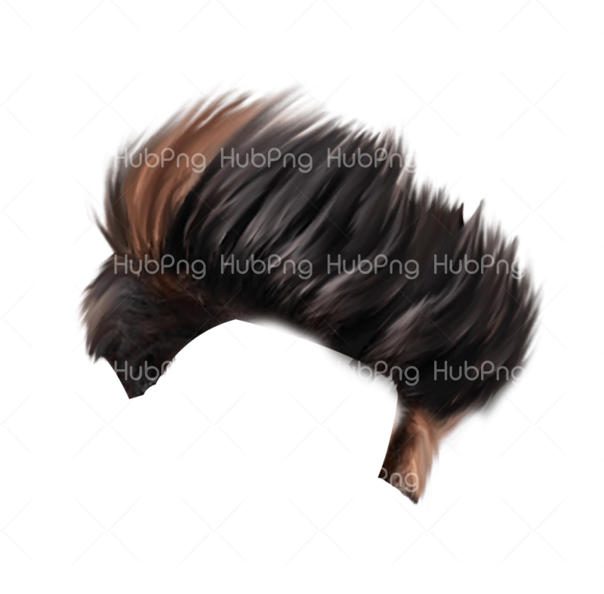 png hair style photo Transparent Background Image for Free