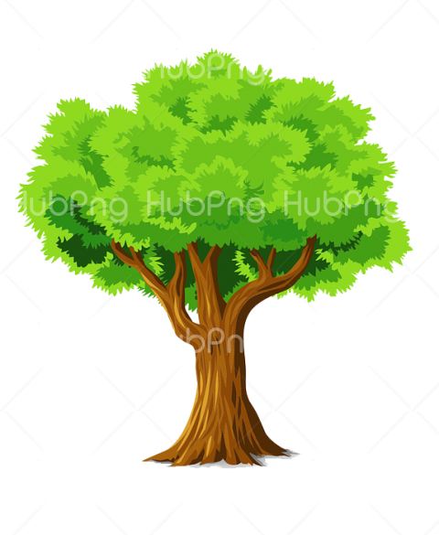 pohon png vector Transparent Background Image for Free